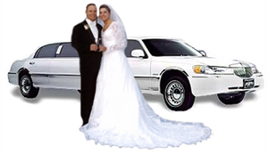 Puerto Vallarta Airport Transportation for Weddings